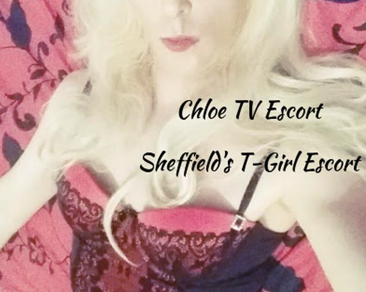 chloetgirl - Sheffield escort - Picture